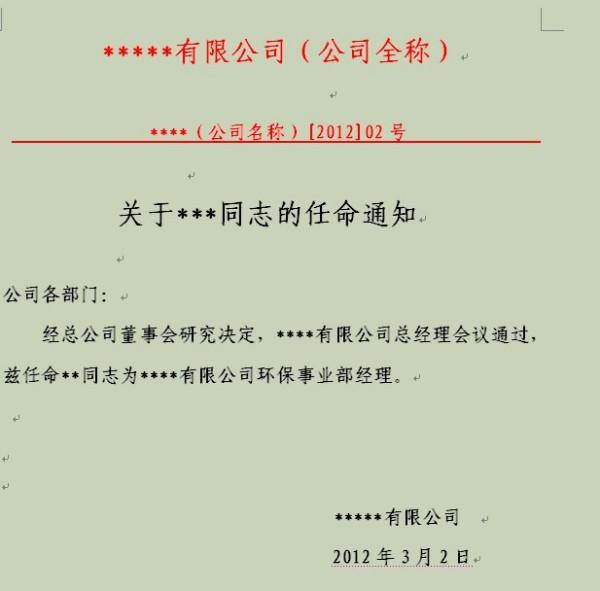 公司法人代表任职书_任命书的格式_任命书标准格式_淘宝助理
