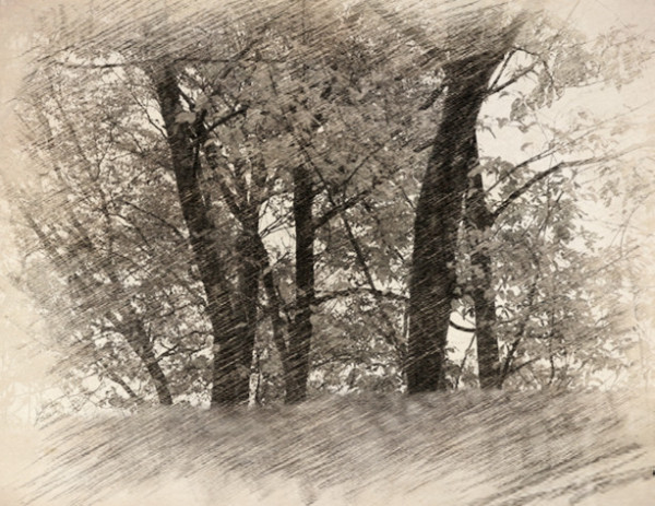 手绘画铅笔 风景_风景转手绘教程 呈现铅笔画的 - 动手网