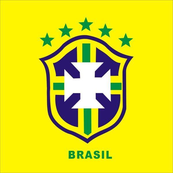 阿根廷足球队标志_求巴西和阿根廷足球队标大图!!_百度知道