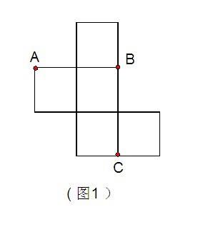 改�b�c���,y�9�c:(_如图1是一个无盖正方体盒子的表面展开图,a,b,c为图上