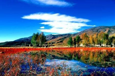 云南有什么不錯的風景?香格里拉的特色風景是什么?