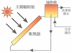 转换_各种动植物都是太阳能量转换的体现吗